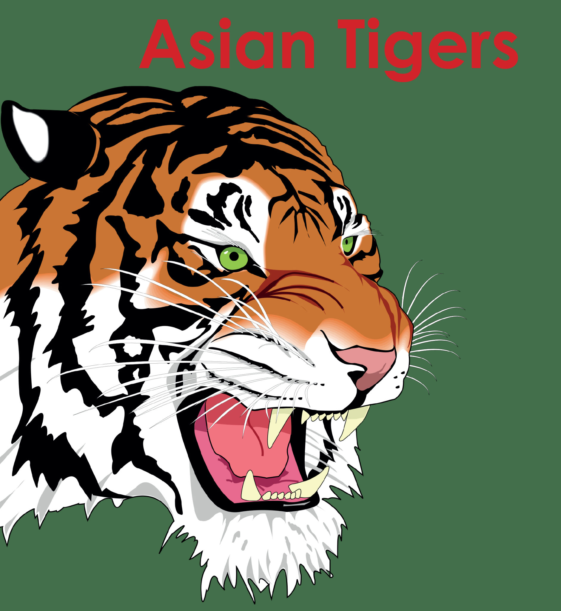 South Africa lagging behind the Asian Tigers