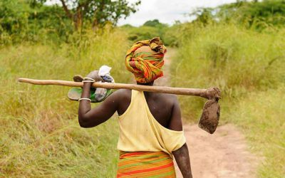 Women farmers join agricultural value chains