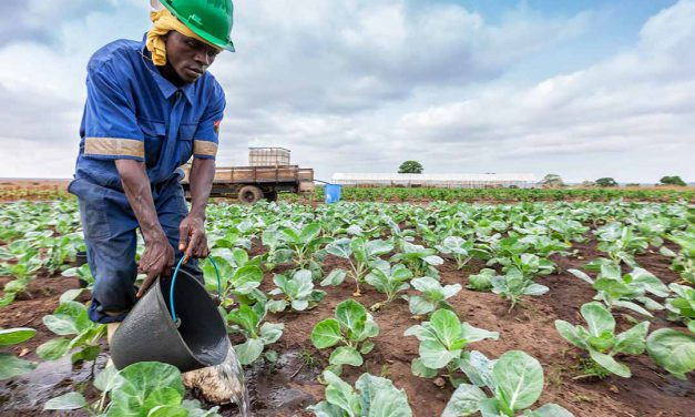 Fixing farming is a complex challenge