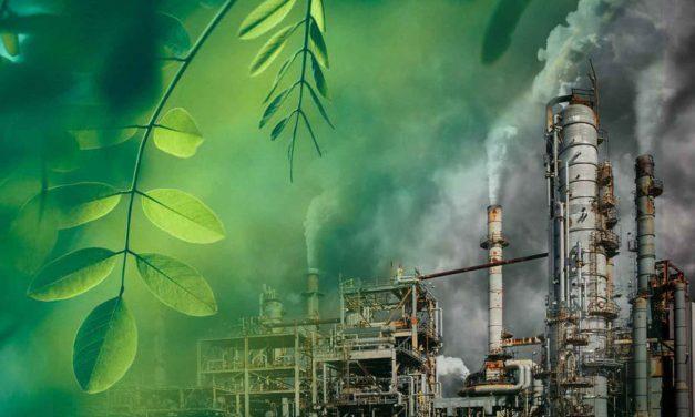 Greenwashing under growing regulatory scrutiny