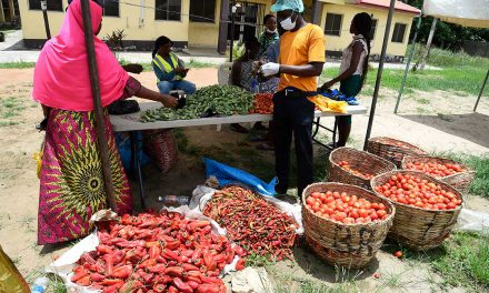 Effective taxation of informal sector through local community partnership