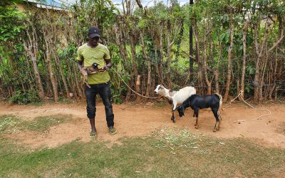 COVID job losses force East Africans back to their rural homes