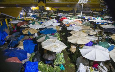 Africa's informal traders adapt to hostile COVID environment
